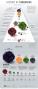 sociology:deadliestpandemics-infographic-88.png